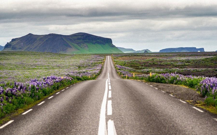 8. Общая протяженность дорог по всей планете составляет 70 миллионов километров.