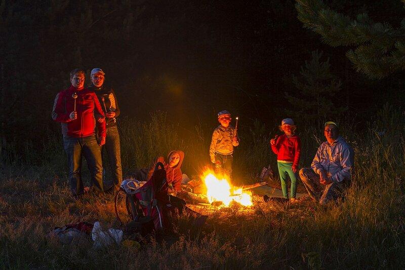 Путешественники на пикнике у костра. огонь освещает лица, сцену обрамляют сосновые лапы