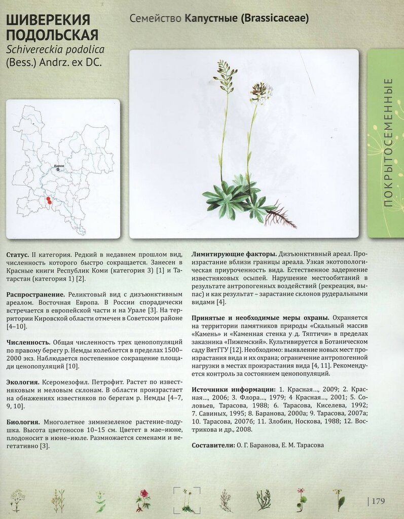 Красная книга Кировской области, страница 179, Шиверекия подольская Schivereckia podolica