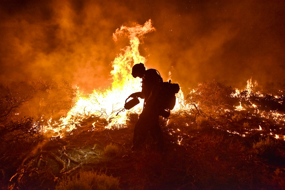 The Lake Fire burns in the San Bernardino National Forest Friday June 19, 2015. By evening the fire