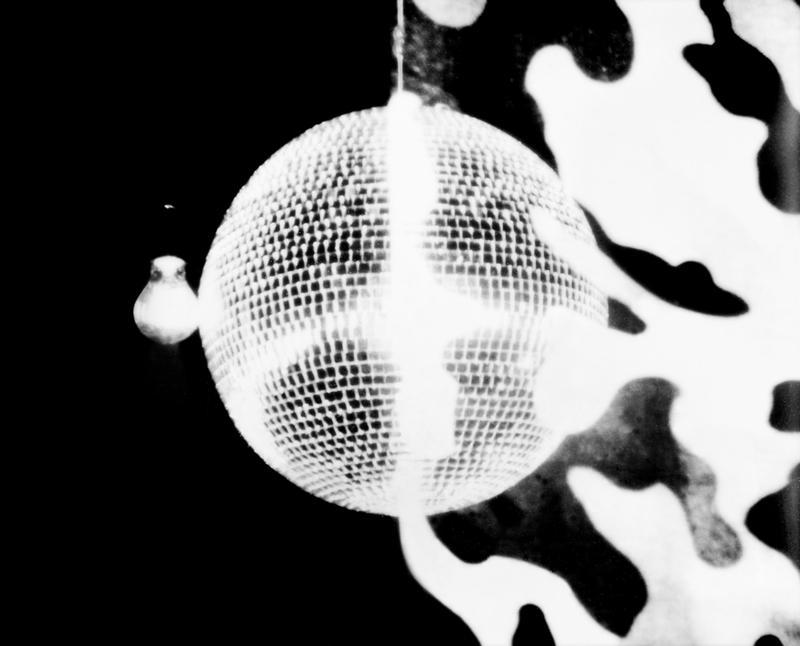 Anri Sala, Untitled (halves) III, 2012 © Anri Sala