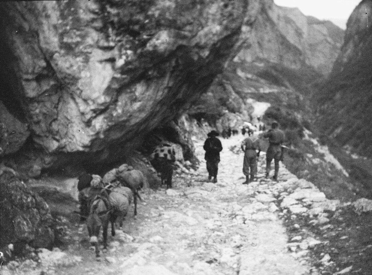 13 августа. Группа III. В ущелье реки Черек-Балкарский. Встреча с караваном осликом