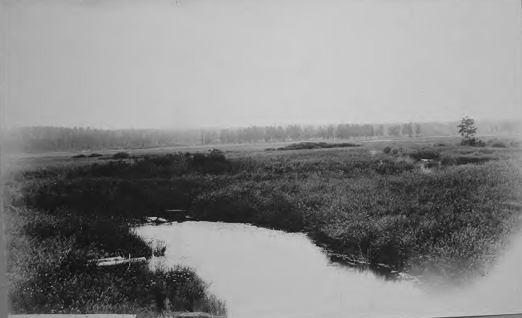 Река Му в верховьях