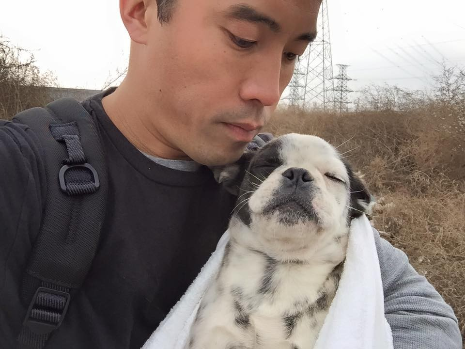 Рискуя жизнью он спасает животных от любителей собачьего мяса
