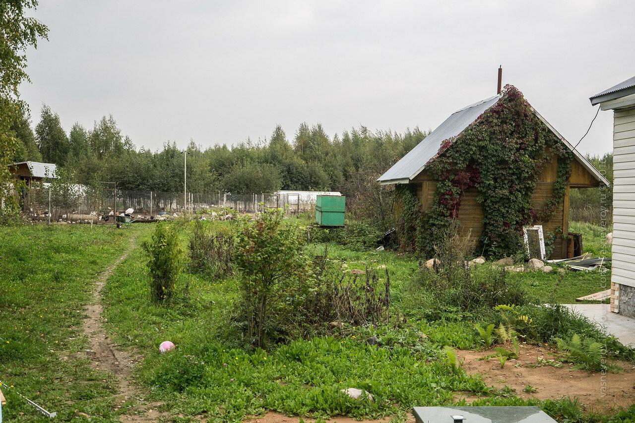 вольный выгул фермер климов андрей куспиц