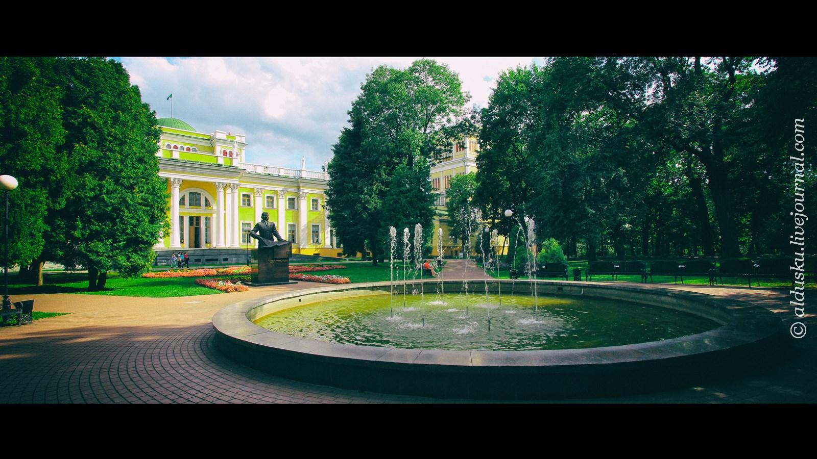 Вид на Дворец Румянцевых и Паскевичей