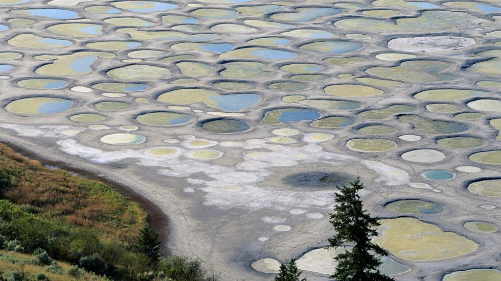 Spotted Lake / Roberta Olenick / Osoyoos in British Columbia in Canada, Spotted Lake contains extrem