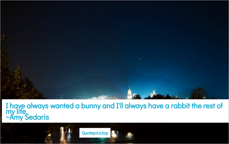 I have always wanted a bunny and I'll always have a rabbit the rest of my life. ~Amy Sedaris