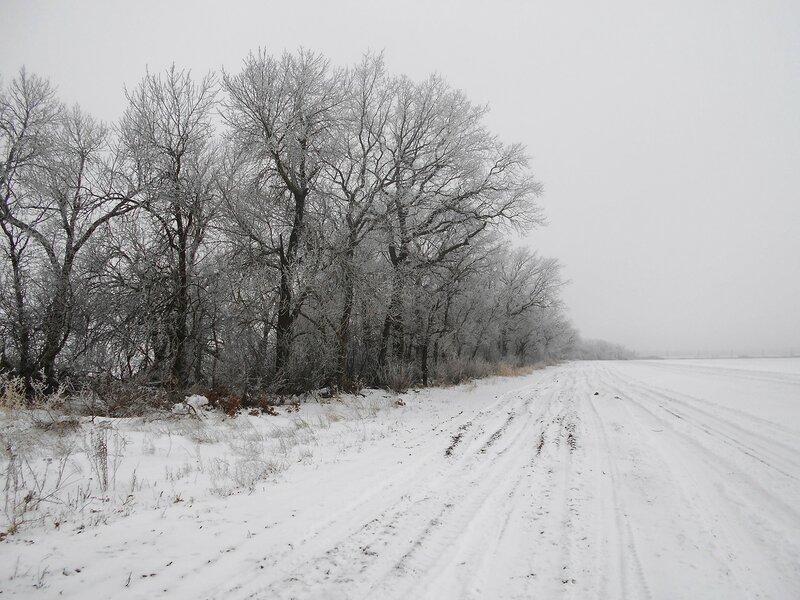 Иней ... В походе декабрьском, снежно-туманном,