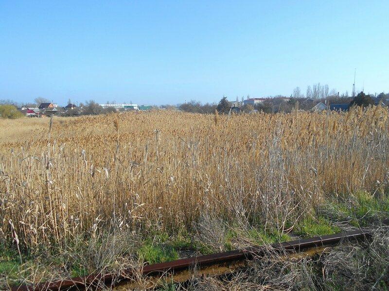 По старой железной дороге ... DSCN1397.JPG