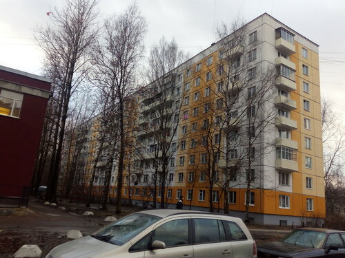 ул. Карпинского 38к2