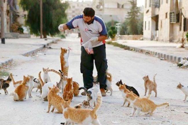© Nobel Peace Prize to Alaa  Всирийском городе Алеппо все жители были вынуждены покинуть свои