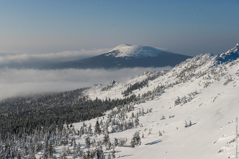 21. Глубина снега под настом — метра два, не меньше. Местами сугробы полностью накрыли елки, та