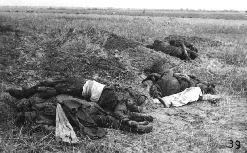Красноармейцы, погибшие в бою в районе Могилева. 07.41.jpg