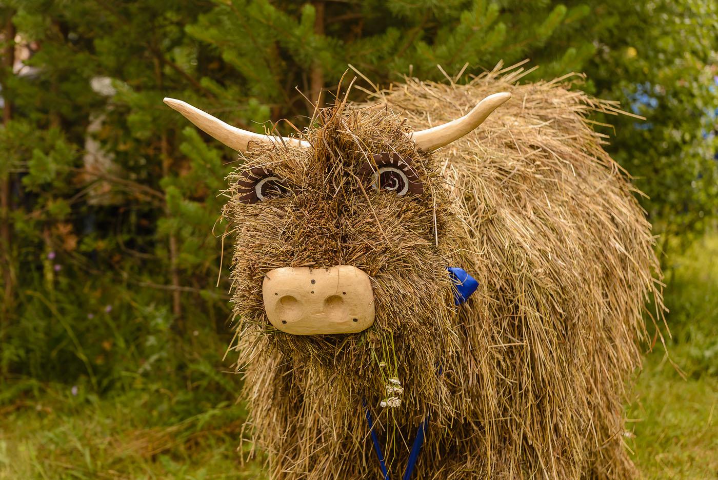 41. Соломенный бык на турнире косарей в Арти. 1/400, 0.33, 5.0, 320, 92.
