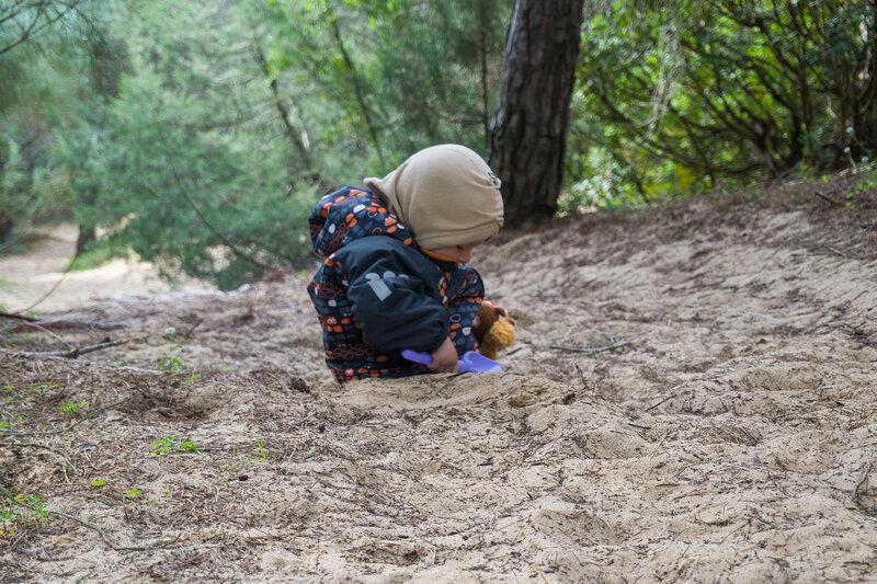 ребенок в сосновом лесу с лопаткой