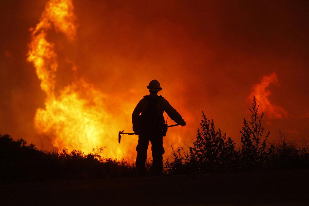12. Пейзажи из горящих деревьев, Калифорния, 1 июня 2013. (Фото David McNew):
