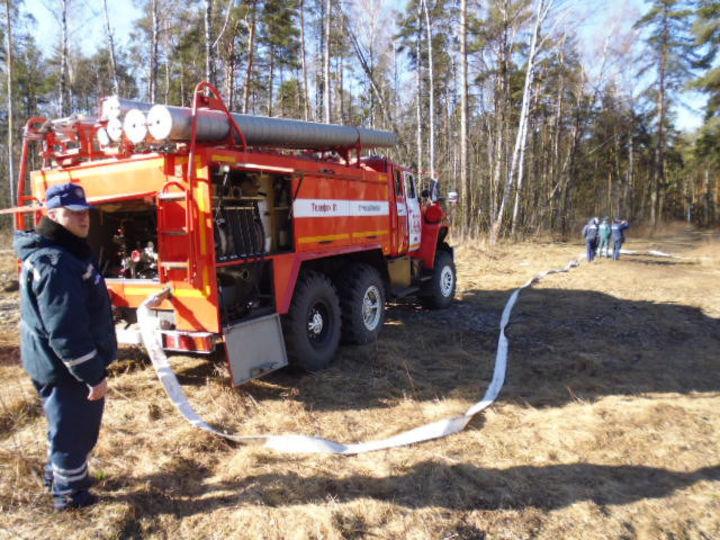 ВПодмосковье объявлен особый противопожарный режим