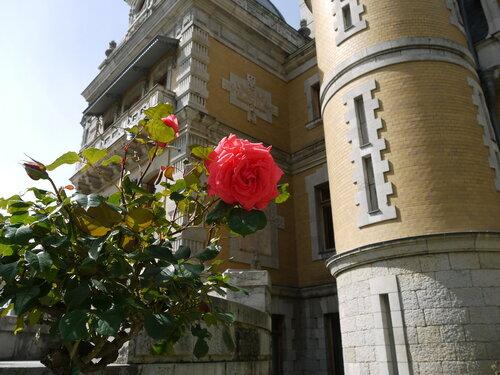 Это не дворец, это роза