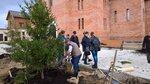 Благоустройство ландшафта территории храма в поселке Лесные Поляны Ивантеевского благочиния