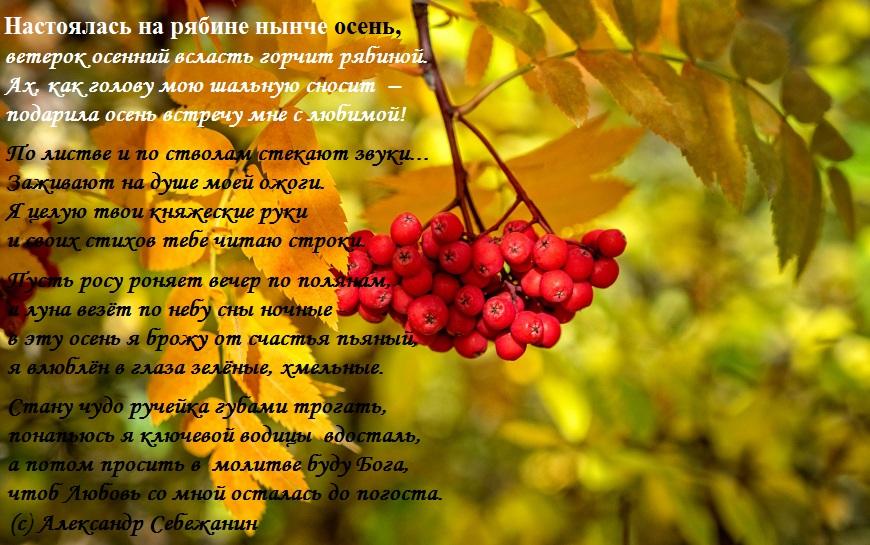 Осенняя рябина стихи