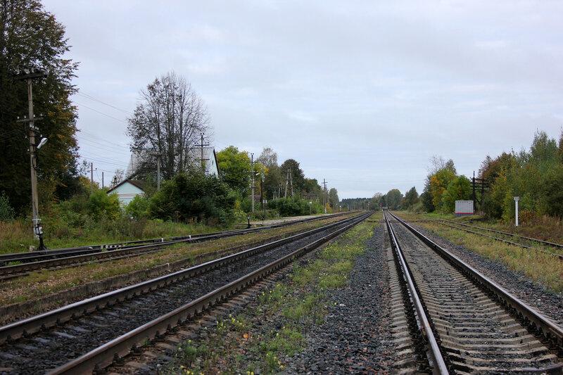 Станция 359-360 км Земцы, вид на Великие луки