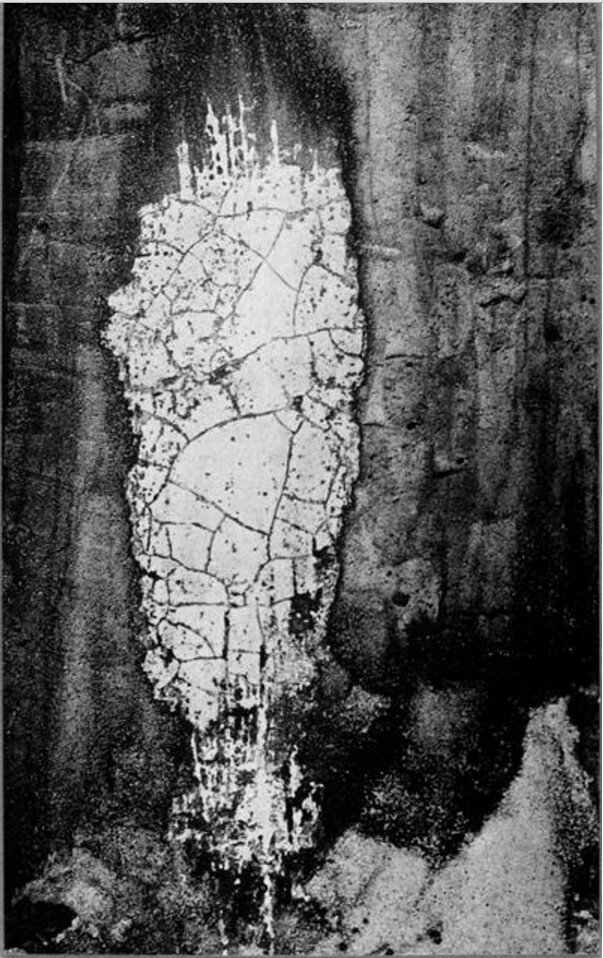 1932. Лимбическое пятно, (силуэт, скрытое изображение)