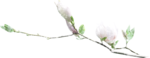 NatashaNaStDesigns_WiterFairytale_branchwithflowers1.png