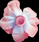 kimla_always_flower4.png
