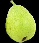 «Fruits_Village_by»  0_8a61c_824c99d4_S