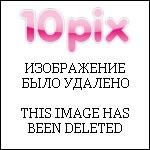 Журнал Братишка №10 (2010) [Журнал подразделений спецназа]