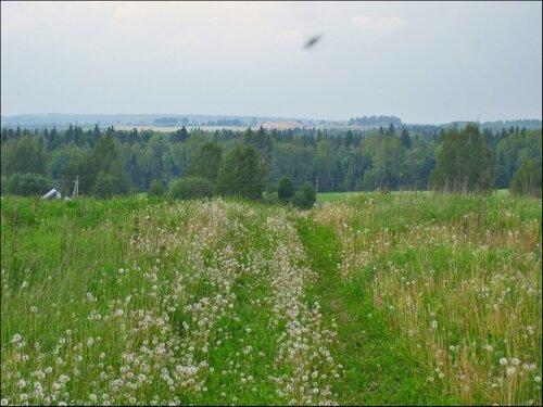 Вид с холма около деревни Голенищево
