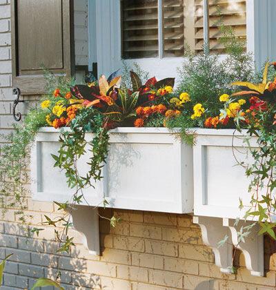 контейнеры с цветами под окнами