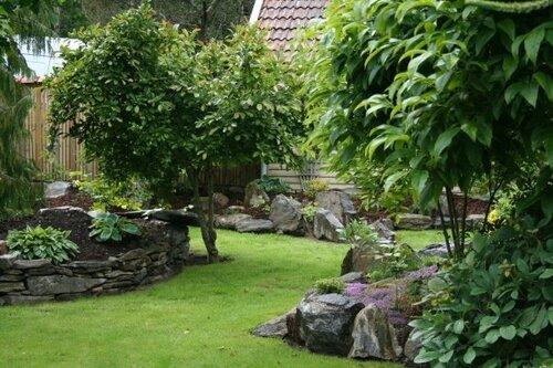 фото ландшафтный дизайн сада