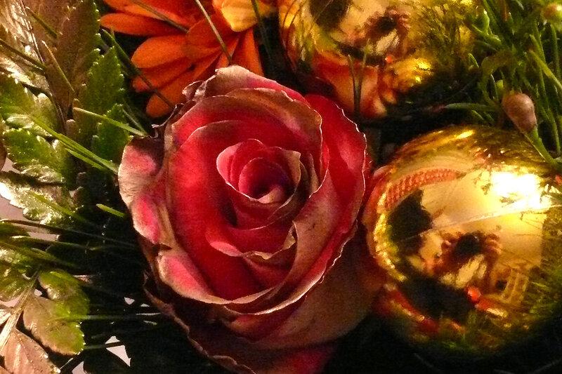Розы на Рождество