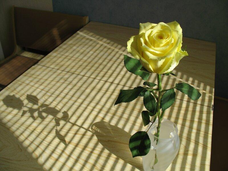 """Схема вышивки  """"Желтая роза """": комментарии."""