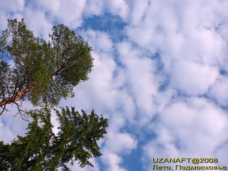http://img-fotki.yandex.ru/get/53/uzanaft.1/0_e7e1_c00749ae_XL