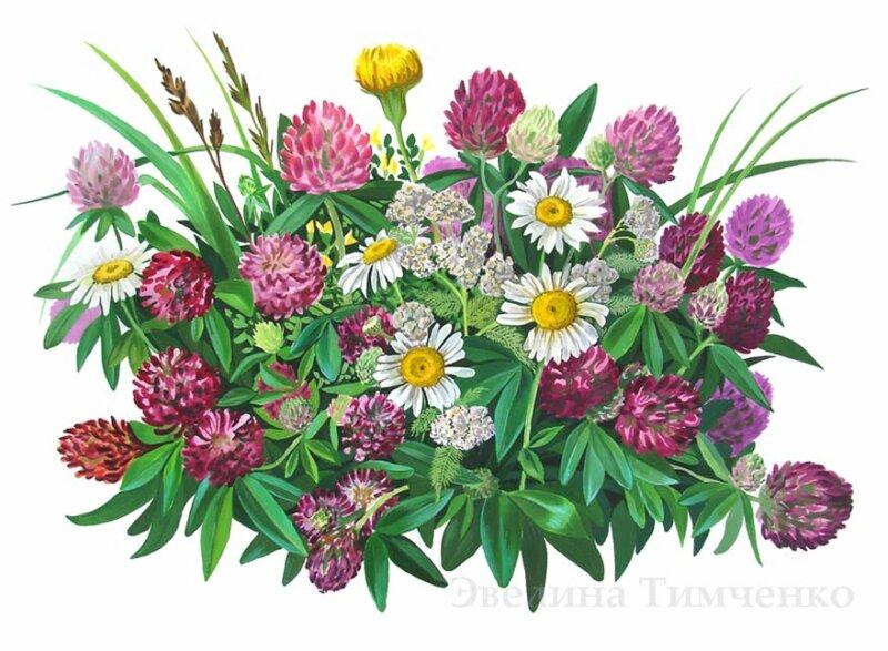 Марка нитей.  300x220 крестов. ромашки. цветы.  Теги. букет. клевер.  DMC, 60 цветов.