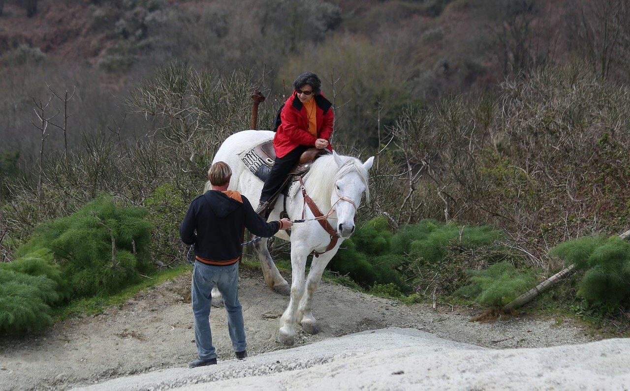 Искья, гора Эпомео.  Конная прогулка