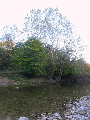 У реки ... SAM_4211.JPG