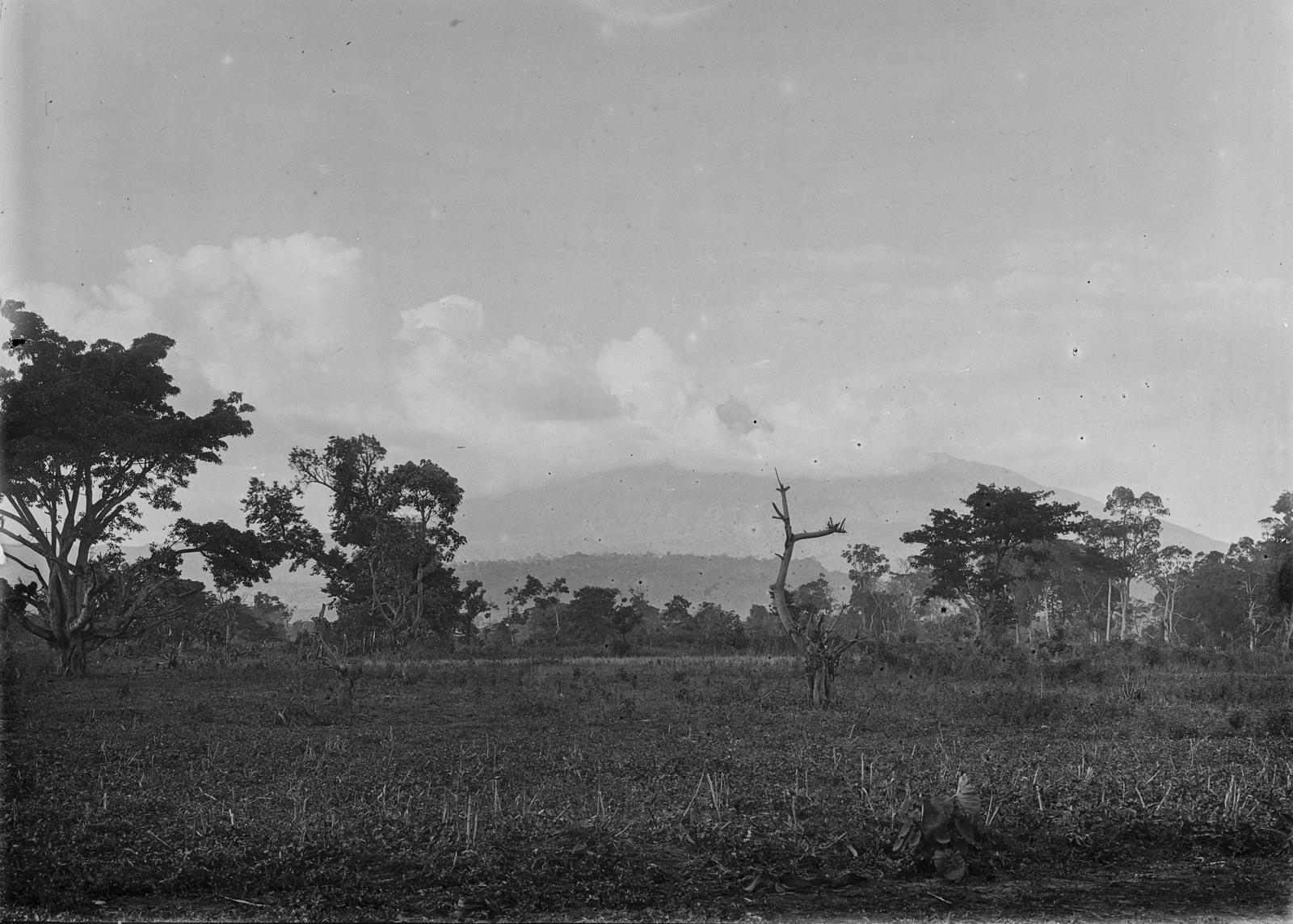 215. Вид на сельскую местность вокруг горы Меру
