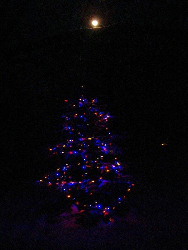 Зима,с.Остров,подворье,огни