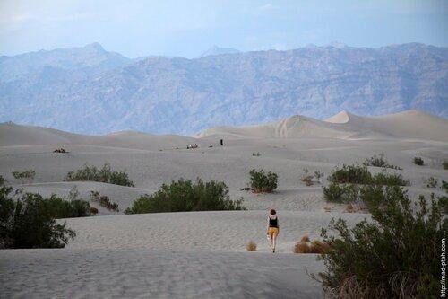 пустыня, дюны