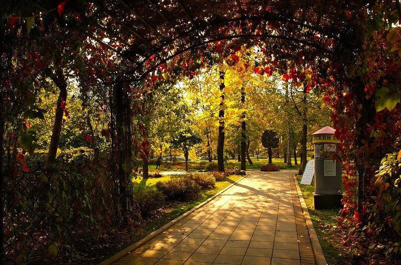 Вход в осенний парк