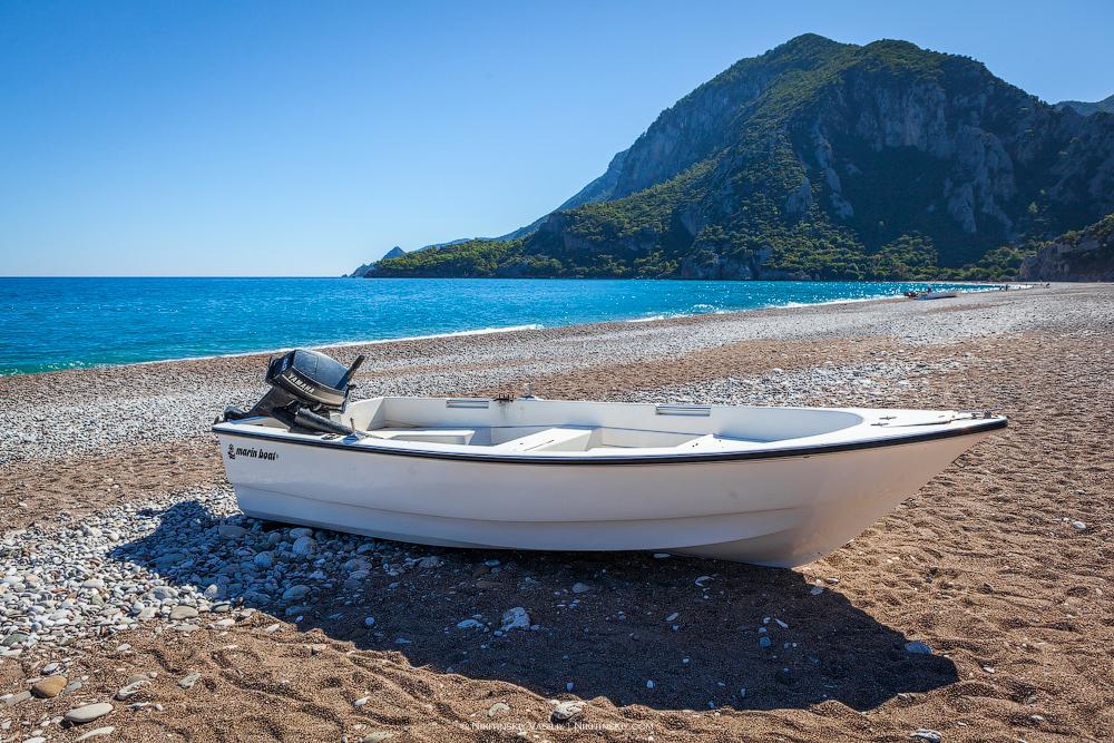 Турция: пляж, где черепахи откладывают яйца