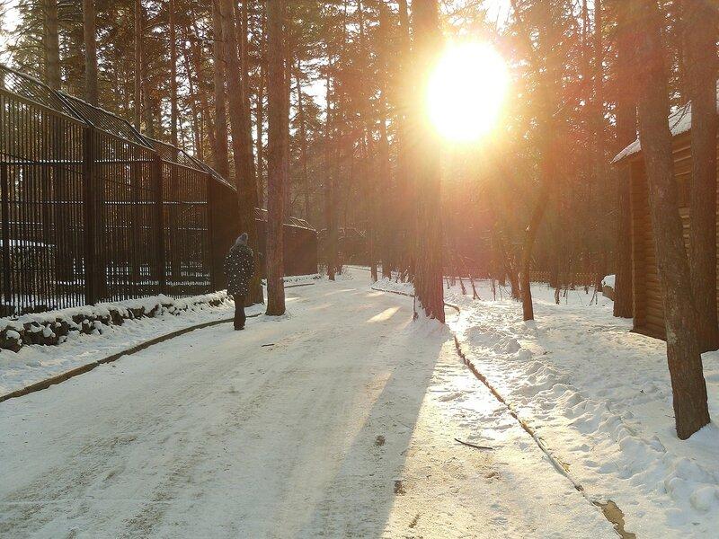 Один наш день в Новосибирске.