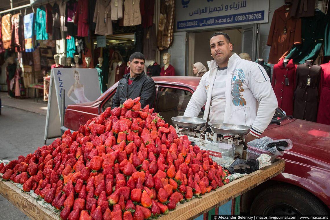 11 Так выглядят плоды нута. Того самого, из которого делают большинство арабской и еврейской еды.