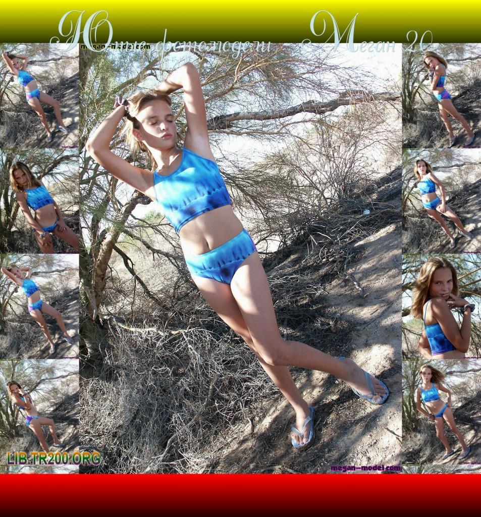 http://img-fotki.yandex.ru/get/5301/316383862.9/0_11d942_d1aba76c_orig