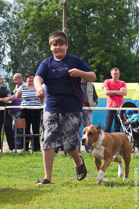 Конкурс «Ребенок и собака»