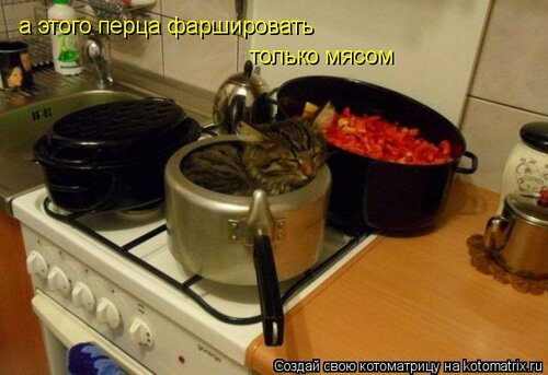 http://img-fotki.yandex.ru/get/5301/63000659.8d/0_742fd_420bec48_L.jpg